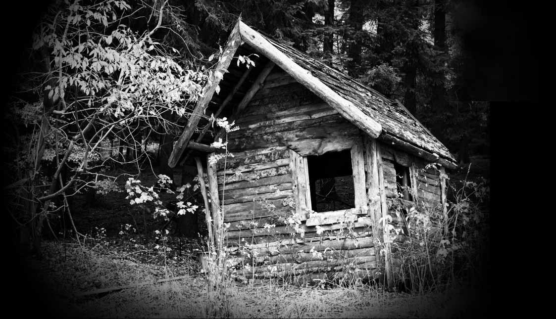 Ein verfallenes Holzhaus im Wald in schwarz und weiß